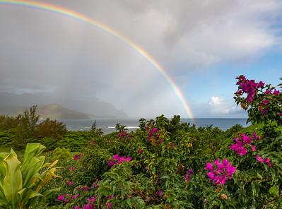 Kauai Rainbow with Colorful Flowers