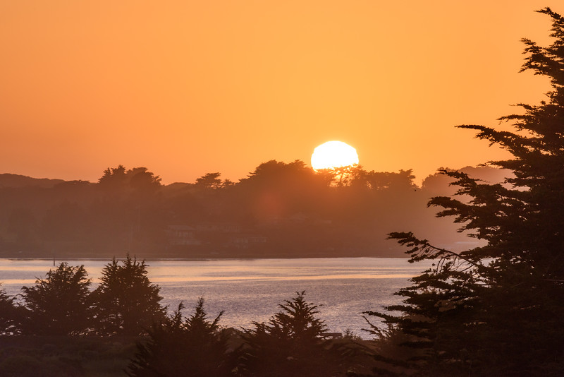 Bodega Bay Warm Sunset