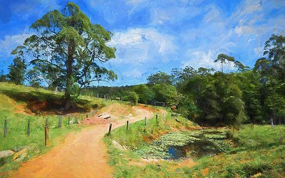 My first FB post. Hinterland, Sunshine Coast, Qld.