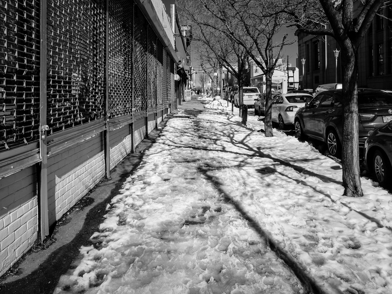 Winter in Greenpoint