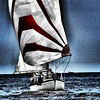 Like this if you missed seeing my photos last weekend #sailing