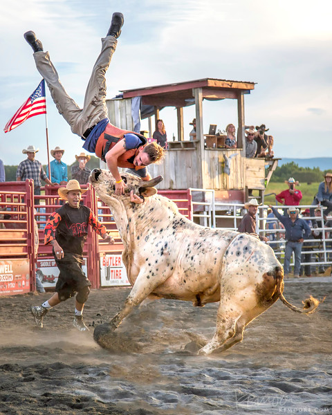"""Playing """"Bull-Hockey"""" at the Rodeo"""