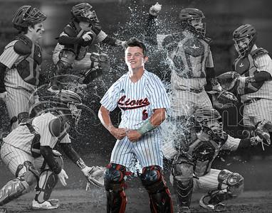 Coosenberry Baseball Collage
