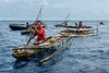 Outrigger canoe with tethered mangrove crabs, Kitava Island, Trobriand Islands, PNG