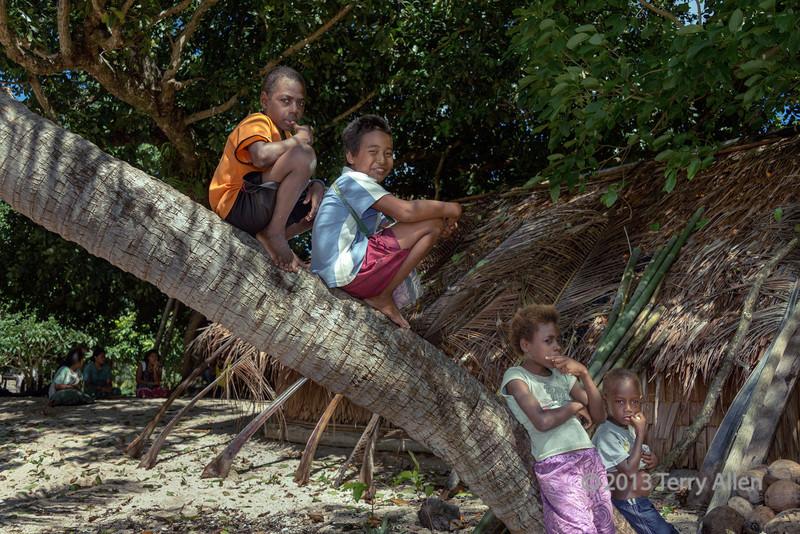 Children sitting on a palm tree trunk, Utupua Is, Solomon Islands