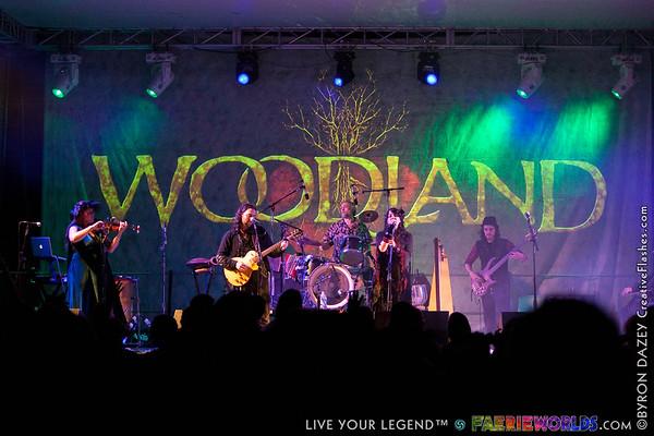 Woodland by Byron Dazey