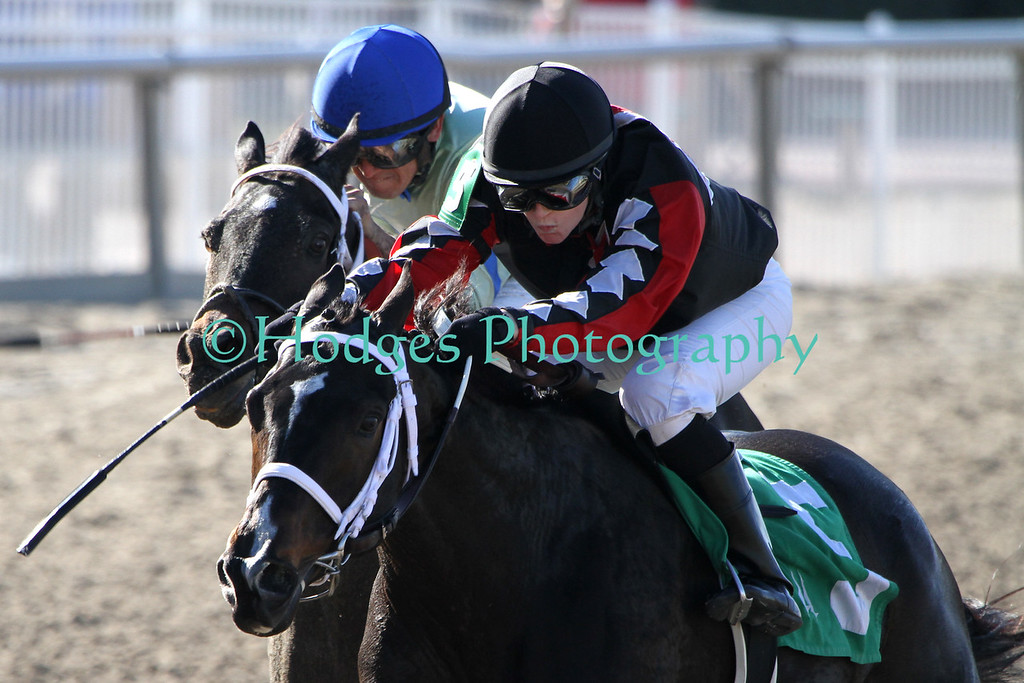 Dueling down the stretch. Rosie Napravnik (black, red, white silks) is currently leading rider at Fair Grounds in New Orleans for the 2012-2013 meet as of 1/24/2013.