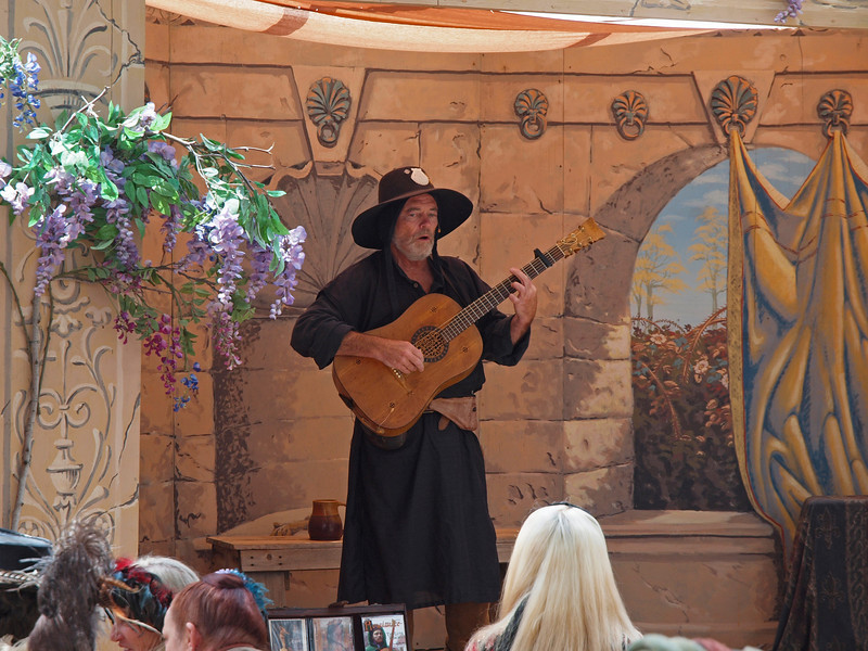 Guitar player at the Ren Faire - 9 May 2010