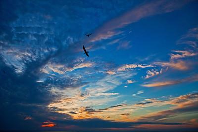 High Flyers Sunset Fairhope AL_2548