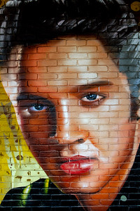 Elvis Mural Downtown Tupelo MS_3081
