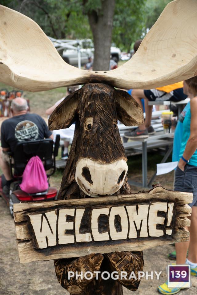Iowa State Fair - 2018