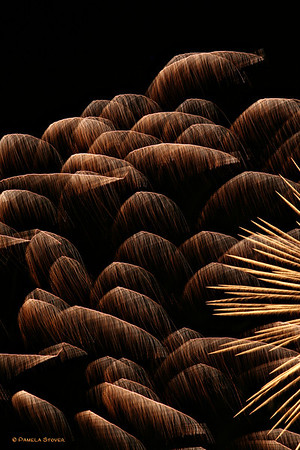 Fourth of July Fireworks<br /> © Pamela Stover<br /> Exposed Images Photography