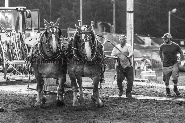 Lebanon Fair Day 2 - Horse pull