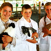 Christopher Aune | The Herald-Tribune<br /> Rabbits are very clean animals, according to (from left) Alexa Brehm (15), Garrett Ertel (11) and Kathryn Putnick (14). The three explained differences of size, fur, head carriage, and other distinguishing factors of their rabbits' breeds at the Franklin County 4-H Fair Tuesday, July 15.