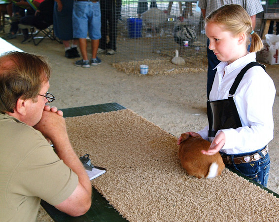 Christopher Aune | The Herald-Tribune<br /> Brooke Bruns, 9, Mount Carmel, won the Rabbit Show's Junior Showmanship honor at the Franklin County 4-H Fair.