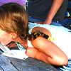 Debbie Blank | The Herald-Tribune<br /> Alice Bulmer takes one last lick before winning the pie eating contest.