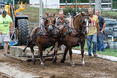 Lebanon Fair Day 1 - Pony Pull