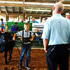 "Debbie Blank | The Herald-Tribune<br /> At the 2018 Ripley County 4-H Beef Show July 25, Logan Meyer competes by himself in Class 1. Judge Greg Johnson said, ""This young man brought a nice heifer."""