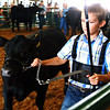 "Debbie Blank | The Herald-Tribune<br /> ""This young man brought a nice heifer,"" the judge said of Logan Meyer."