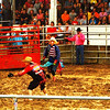 Christopher Aune | The Herald-Tribune<br /> Spectators watched as clowns kept right at work through rain and mud during a rodeo in the Ripley County 4-H Fair grandstands Wednesday. Please see more photos on page 12.