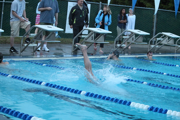 Fairwood Swim 2013