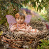 mylittlebird_rainboiw