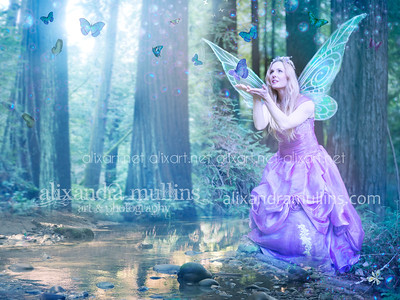 purple_fairy_butterfly20160303_5656