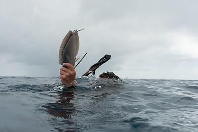 Fakarava Spear-Fishermen