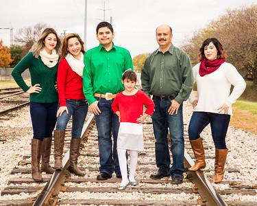 Falcon Family13