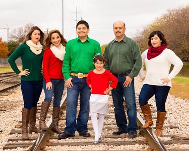 Falcon Family10