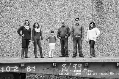 Falcon Family31