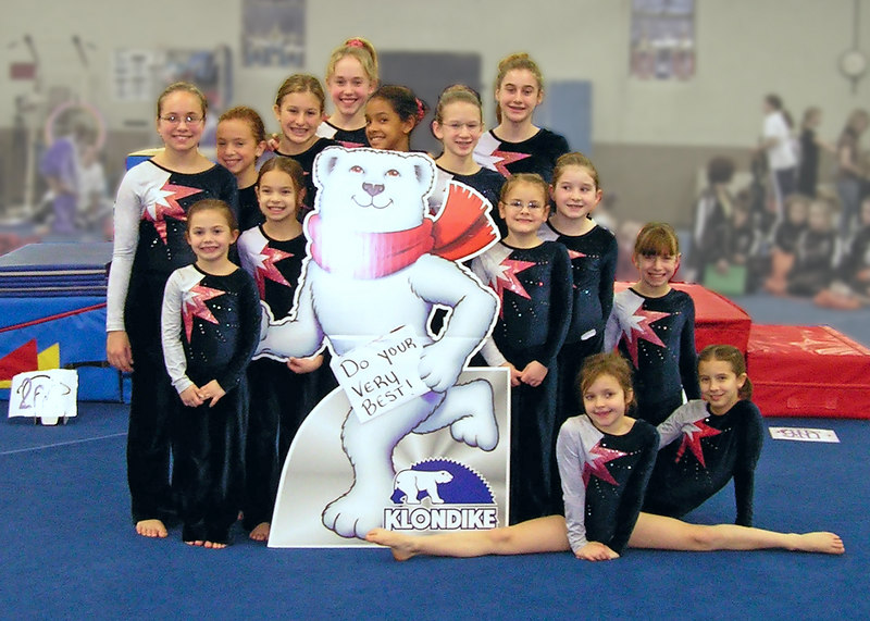 "Willow Tree Gymnastics Team Photo<br /> <br /> file #:  9004 a1 5X7<br /> <br />    Help us assure your satisfaction with purchased prints and gifts - PLEASE click ""prints & gifts"" below for important ordering information. Thank You!"