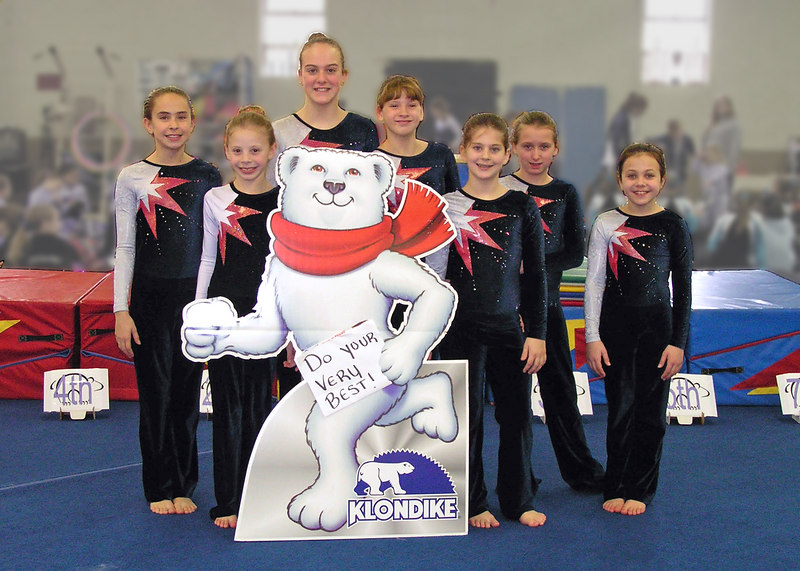 "Willow Tree Gymnastics Team Photo<br /> <br /> file #:  9021 a1 5X7 <br /> <br />    Help us assure your satisfaction with purchased prints and gifts - PLEASE click ""prints & gifts"" below for important ordering information. Thank You!"