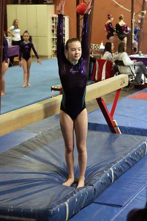 Lions Gymnastics : Session 5 : Level 7 / 8 / APO