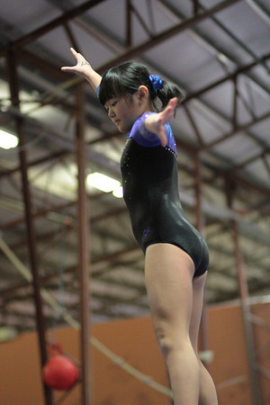 2014 Polar Bear Meet : Session 1 : Falcon Gymnastics