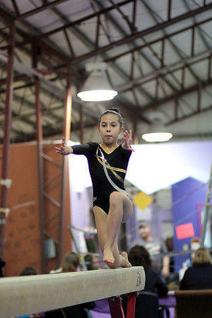 2014 Polar Bear Meet : Session 2 : Gymkhana Gymnastics