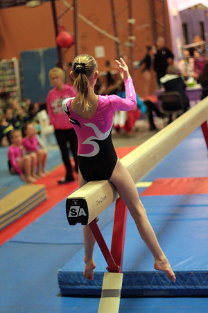 2014 Polar Bear Meet : Session 2 : Premiere Gymnastics