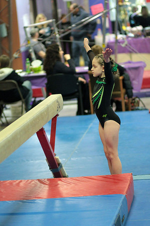 2014 Polar Bear Meet : Session 3 : Summit Gymnastics