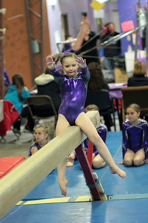 2014 Polar Bear Meet : Session 3 : Gymsport Gems