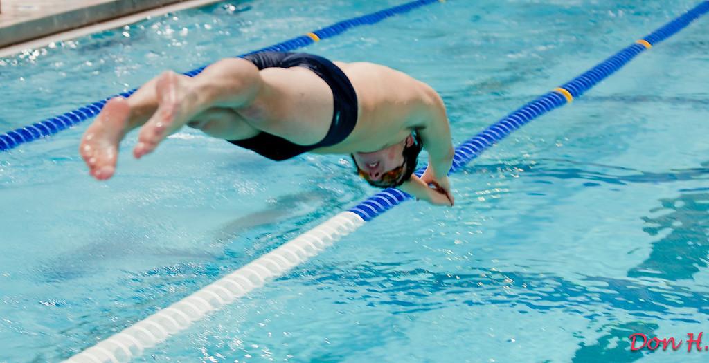 2009 to 2010 swiming