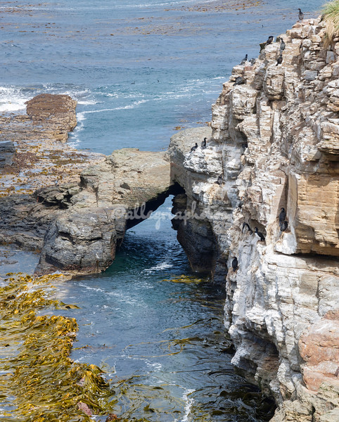 Natural Stone Arch