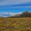 Across the diddle dee bushes to the mountains of Pebble Island, Falkland Islands