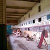 Clydesdale stalls
