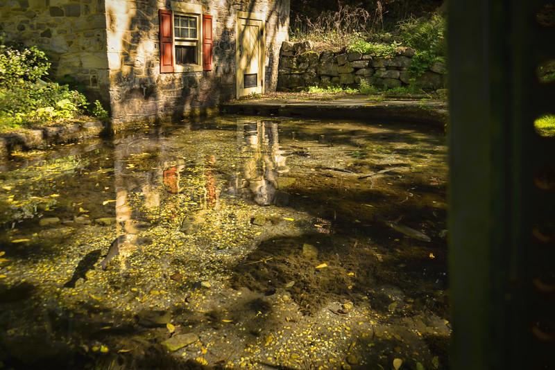 Bogart's bridge fish  pond