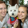 TherapyDogs2016-6