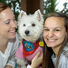 TherapyDogs2016-5