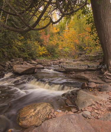 Fall along the Onion River