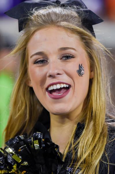 FB Clemson Cheerleaders_BOSS 2019-18