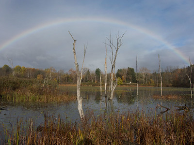 Rainbow over Beaver Marsh, Cuyahoga Valley National Park