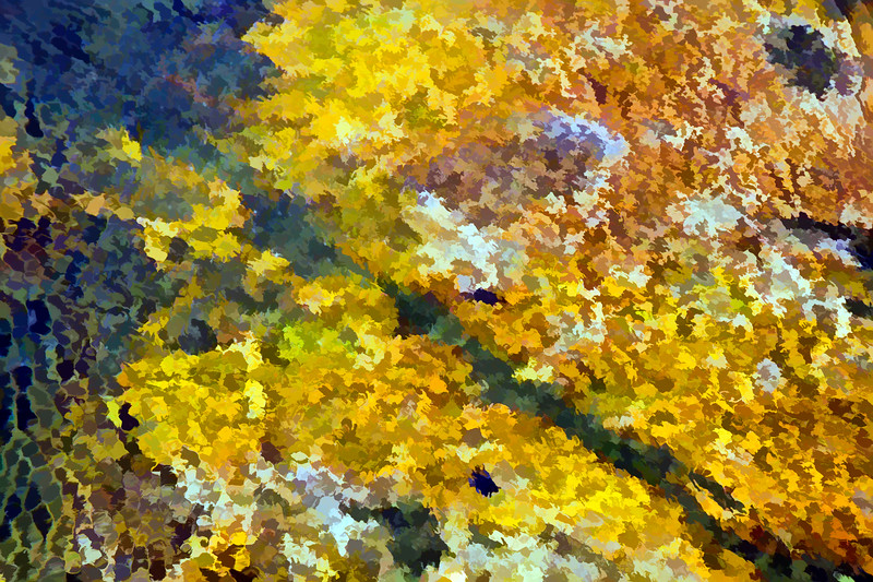 Tidepool, Abstracted